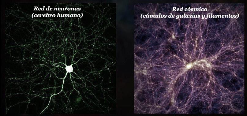 Resultado de imagen de ¿Es más grande el cerebro humano que el universo?